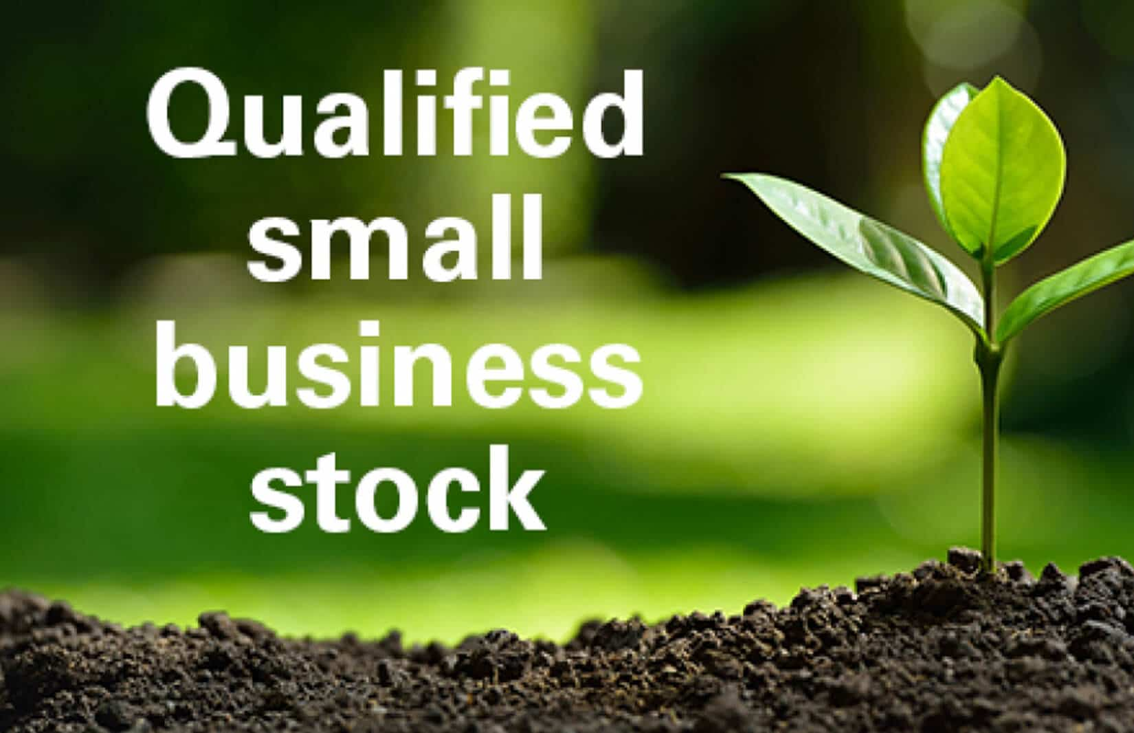 Small Business Stock Advantages for Taxes